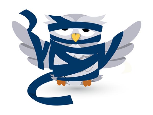 injured owl