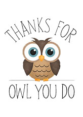 Recognition Owl-small